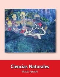 Ciencias Naturales Sexto grado 2019-2020